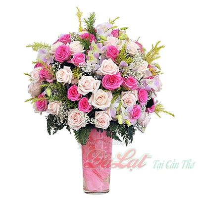 Hoa dịu dàng