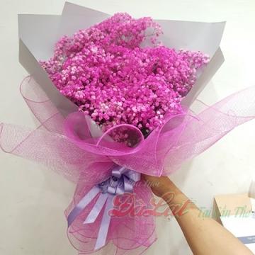 Hoa baby hồng