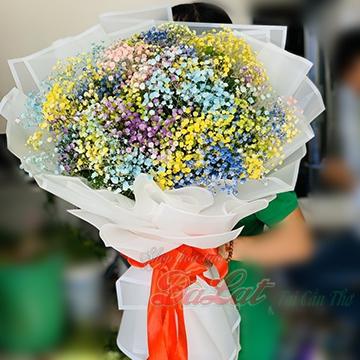 Hoa baby vàng xanh