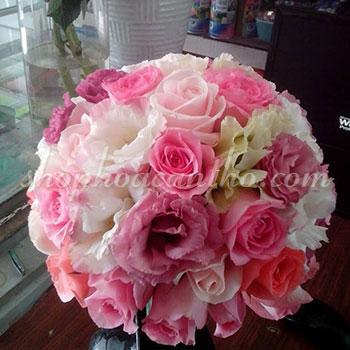 Cầm tay cô dâu - Sắc môi hồng