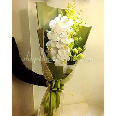 Hoa mừng sinh nhật - Bó hoa lan