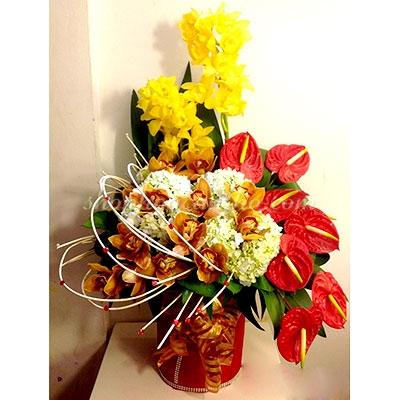 VP.20 - Chậu hoa vip