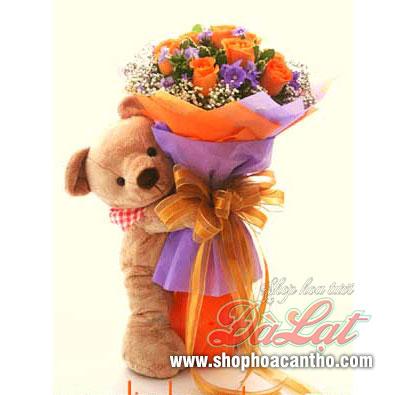 Hoa hồng gấu yêu