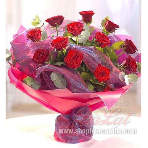 Hồng đỏ tình yêu