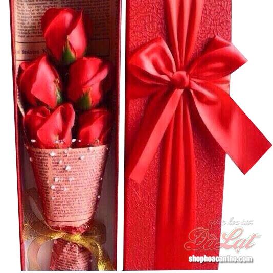 Hoa hồng sáp Đỏ
